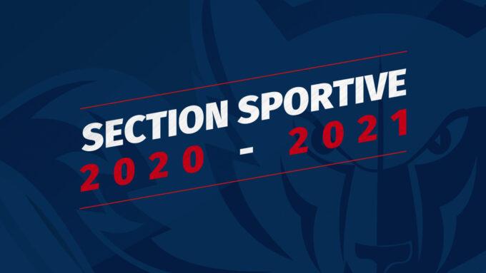 section-sportive-20-21.jpg